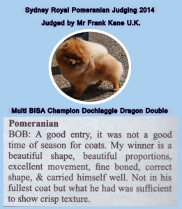 Multi BISA Supreme Champion Dochlaggie Dragon Double. Judge's critique from Sydney Royal 2014