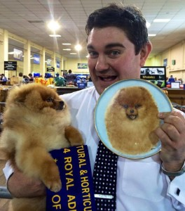 Multi BISA Supreme Champion Dochlaggie Dragon Double is Best of Breed Pomeranian Adelaide Royal 2014