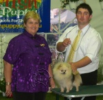 Champion Dochlaggie Dizzy Izzy pictured here with Judge Yvonne Meintjes after winning Puppy in Show at the Pomeranian Club Show.